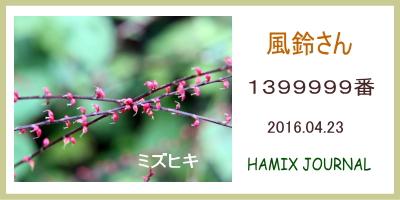 14_8.jpg  : 62 KB