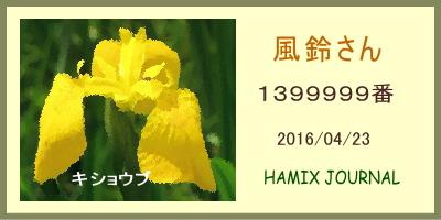 14_9.jpg  : 66 KB